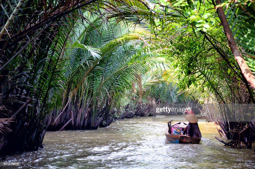 Mekong Delta, Vietnam : Stock Photo