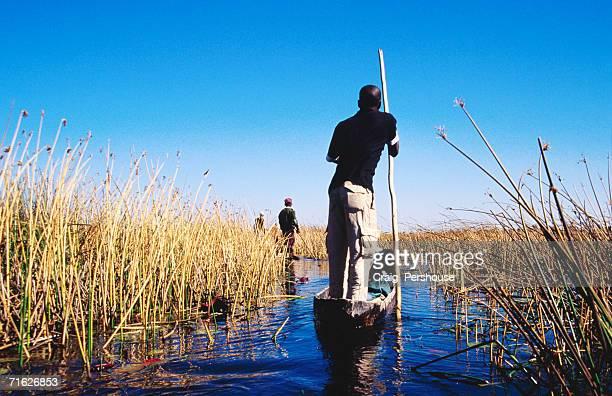 Mekoro (dugout canoes) being poled through wetlands, Okavango Delta, Botswana