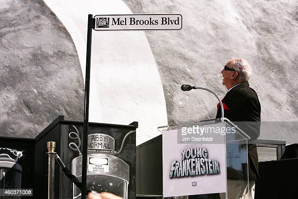 Mel Brooks unveiling his sign at the Mel Brooks street and mural dedication at Fox Studios in Los Angeles California on October 23 2014