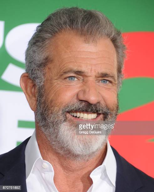 Mel Gibson arrives at the premiere of Paramount Pictures' 'Daddy's Home 2' at Regency Village Theatre on November 5 2017 in Westwood California