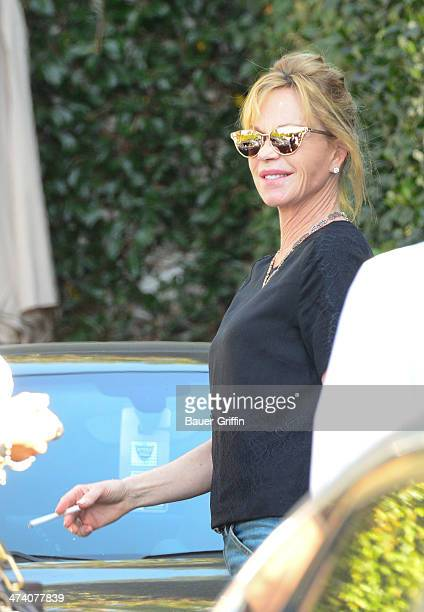 Melanie Griffith is seen on February 21 2014 in Los Angeles California