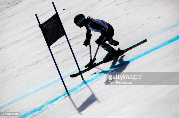Melanie Schwartz of the United States competes in the Women's Giant Slalom Standing during day nine of the Sochi 2014 Paralympic Winter Games at Rosa...