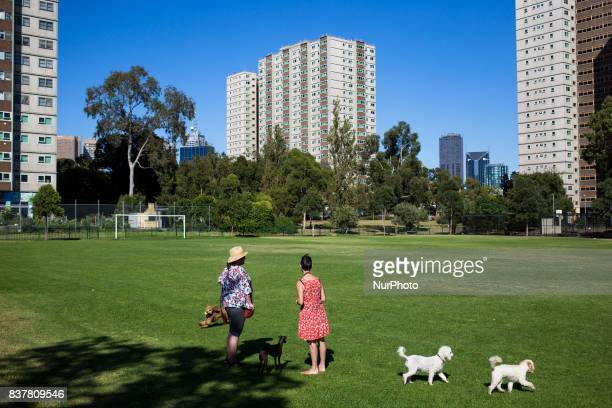 Melbourne Australia 19 march 2017 Two women meet up in a park of the Fitzroy district to walk their dogs Melbourne is ranked as the worlds most...