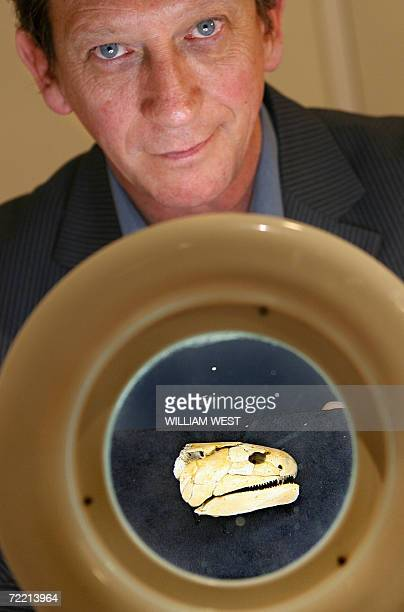 Dr John Long Head of Sciences at Museum Victoria unveils the 400 million year old Devonian fish fossil named Gogonasus meaning snout from Gogo after...