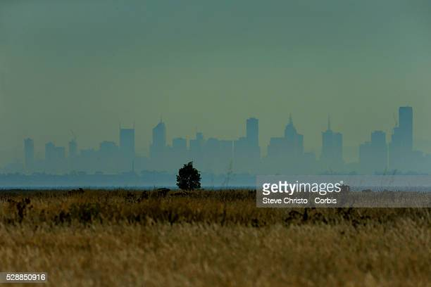 Melbourne City Skyline from a urban growth and rural perspective. Melbourne, Australia. Monday 3rd March 2014.