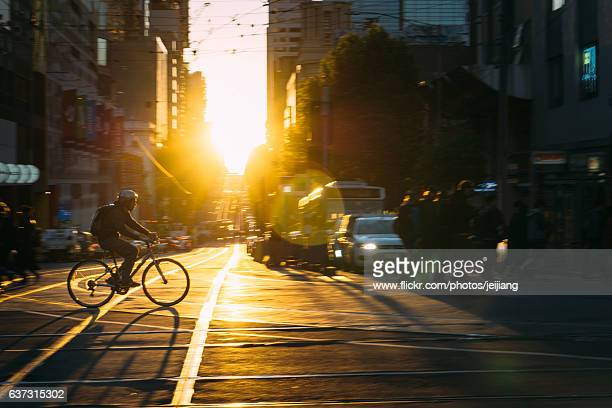 Melbourne city street with a bicycle man in sunset
