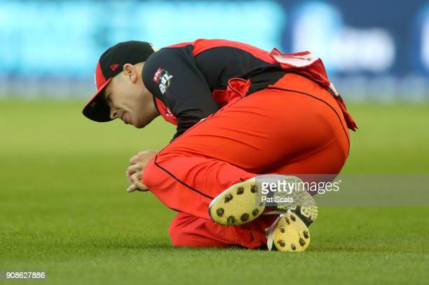 Melbourne Renegades Marcus Harris takes a catch to dismiss Strikers Alex Carey during the Big Bash League match between the Melbourne Renegades and...