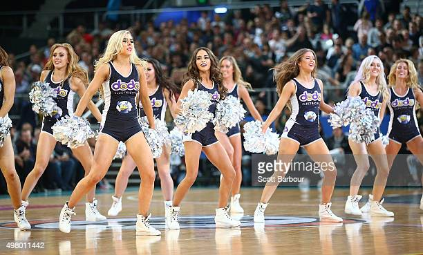 Melbourne United cheerleaders perform during the round seven NBL match between Melbourne United and the Townsville Crocodiles at Hisense Arena on...