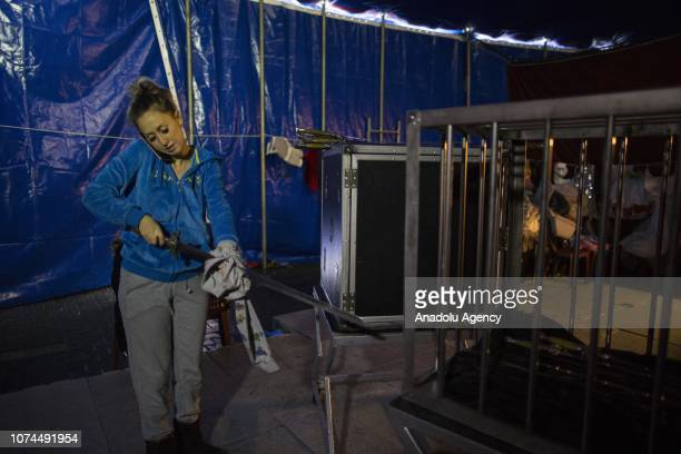 Melike Cankurt clears a sword while speaking on the phone at an animal-free circus in Ankara, Turkey on December 15, 2018. Owners of an animal-free...