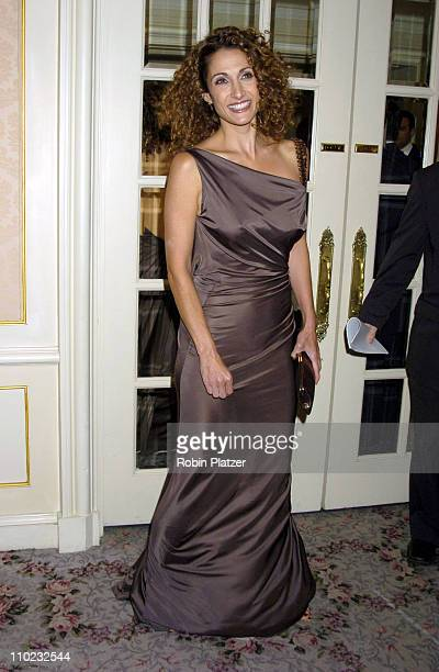Melina Kanakaredes during Museum of the Moving Image Honors Jeffrey Bewkes and Leslie Moonves at The St Regis Hotel in New York City New York United...