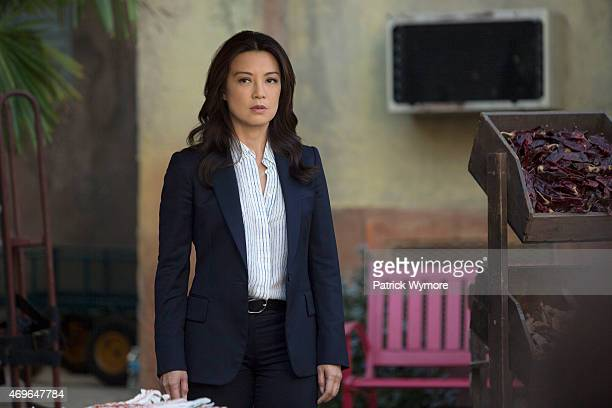 S AGENTS OF SHIELD Melinda The story of Melinda May's transformation into The Cavalry is revealed as she finds herself at a crossroads in the war...