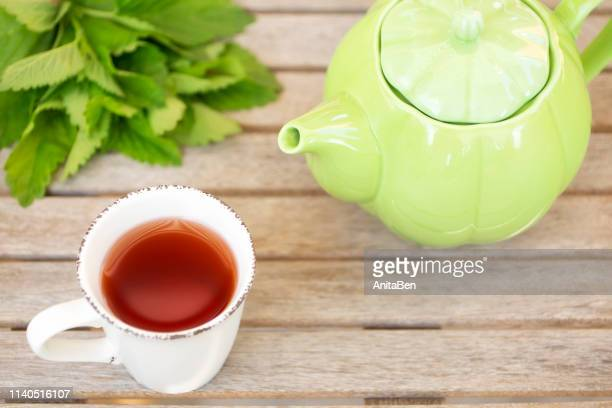 melissa officinalis cup of tee and kettle on wooden background - erva cidreira imagens e fotografias de stock