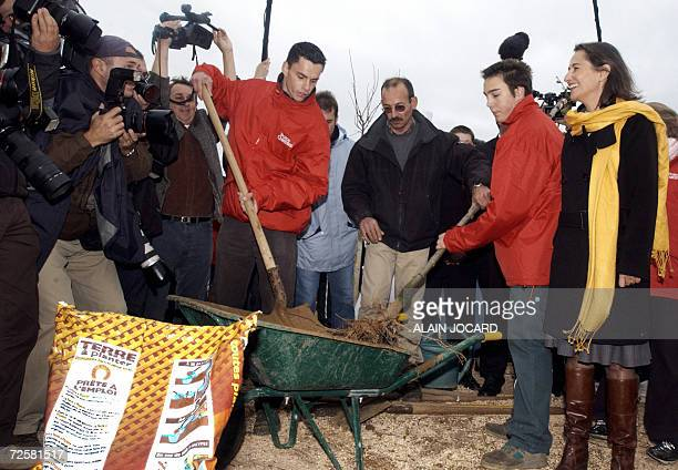 Segolene Royal one of the three candidates for the Socialist nomination in the 2007 French presidential race looks at people planting a tree during...
