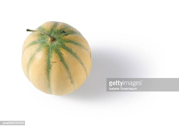 Melon with darker green veins, white background