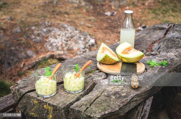 Melonade in the Forest at a Picnic Table