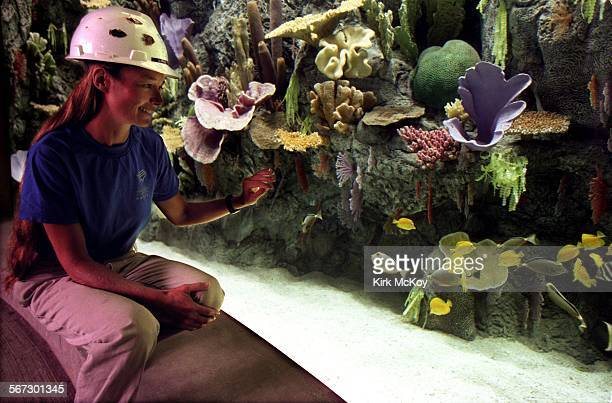 MELongBeach21006KM––Long Beach CA 6 OCT 1997––Sandy Brick curator of the Tropicval Pacific Gallery at the Long Beach Aquarium of the Pacific watch...