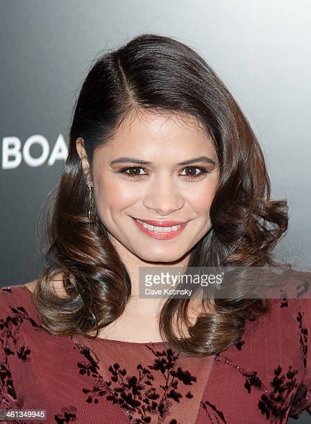 Melonie Diaz attends the 2014 National Board Of Review Awards gala at Cipriani 42nd Street on January 7 2014 in New York City