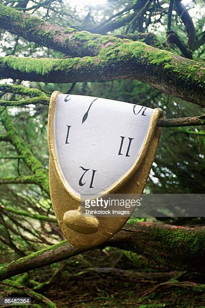 melted clock on tree - salvador dalí stock pictures, royalty-free photos & images