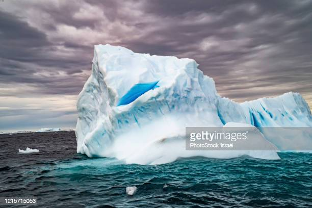melting iceberg with ice floes - antarctica stock pictures, royalty-free photos & images