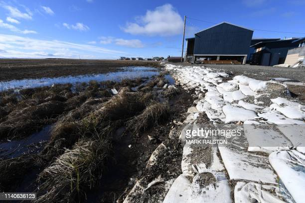 Melting permafrost tundra at the town of Quinhagak on the Yukon Delta in Alaska on April 12, 2019. - According to scientists, Alaska has been warming...