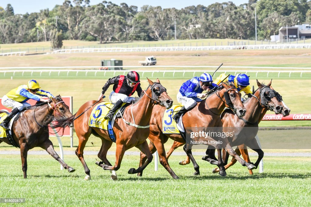 Melveen ridden by Damien Thornton wins the Spicer Thoroughbreds Plate at Ladbrokes Park Lakeside Racecourse on February 14, 2018 in Springvale, Australia.