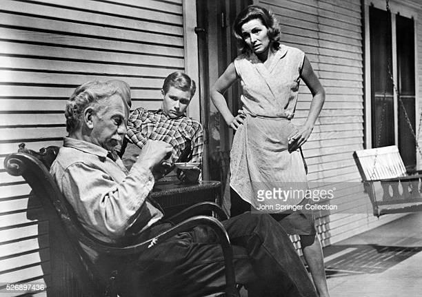 Melvyn Douglas as Homer Bannon Brandon De Wilde as Lonnie Bannon and Patricia Neal as Alma Brown in the 1963 film Hud