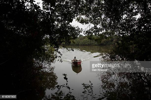 CCC member Mamadi Camara conducts monitoring work using satellite tracking equipment on the River Niger near the Chimpanzee Conservation Centre on...