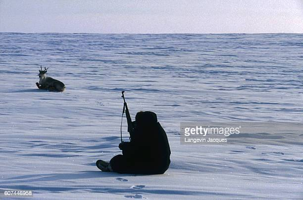 A member of a Dolgan hunting party hunts a reindeer near the village of Syndassko Russia The Dolgans traditionally a nomadic people who live along...