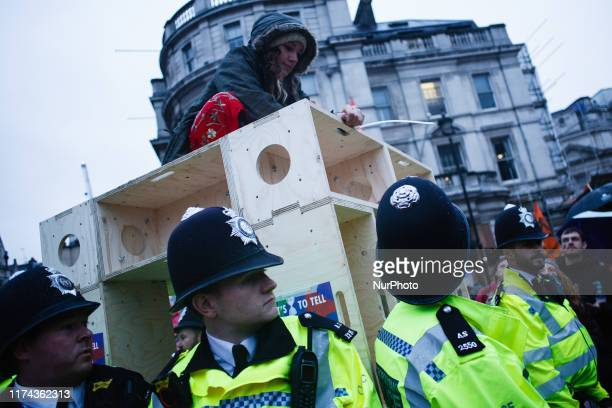 A member of climate change activist group Extinction Rebellion sits on top of a wooden structure in Trafalgar Square her wrist cabletied to it...