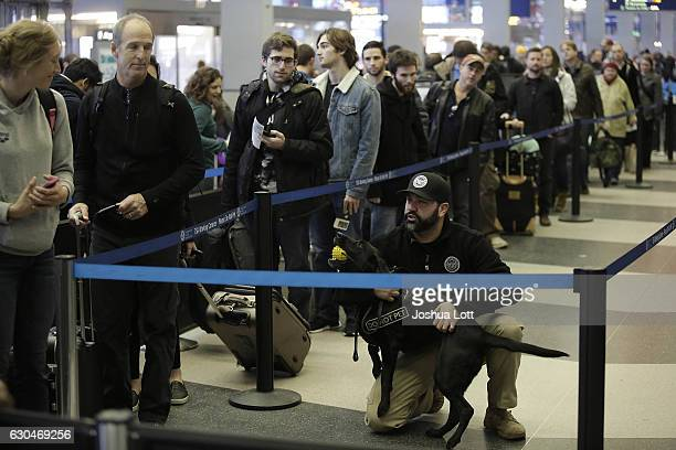 A member of Homeland Security kneels next to his K9 dog as travelers wait in the TSA security line at O'Hare International Airport on December 23...