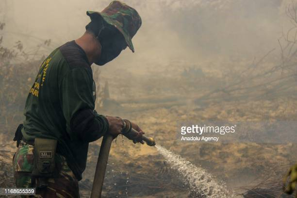 A member of Indonesian Army extinguishes the fire that broke out at a peatland in Rimbo Panjang Village Tambang District Kampar Regency Riau Province...
