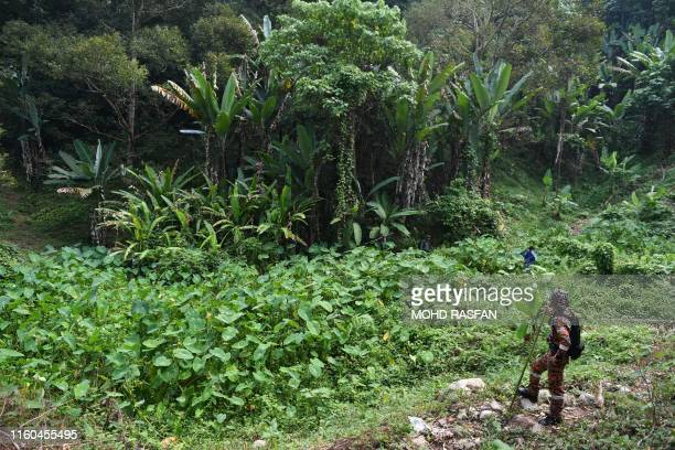 A member of Malaysian rescue team takes part in a search and rescue operation in a forest for the missing 15yearold FrancoIrish girl Nora Quoirin in...