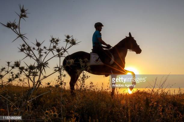 A member of mounted units which assigned to Van Provincial Gendarmerie Command from Gendarmerie Horse and Dog Training Center to support security...