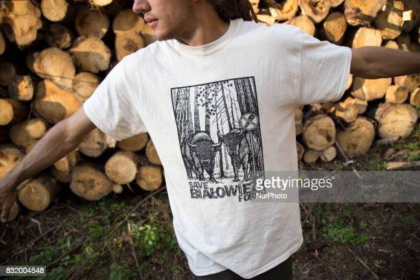 Member of quotCamp for forestquot organization stand near illegal logging in quotSave Bialowieza forestquot tshirt during event near illegal logging...