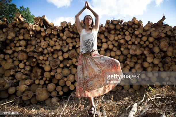 Member of quotCamp for forestquot organization stands in Yoga Tree pose near illegal logging during event near illegal logging near Bialowieza on...