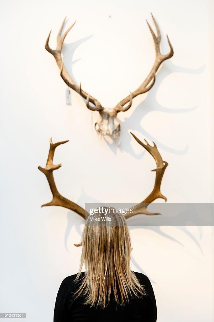 Antlers Topix