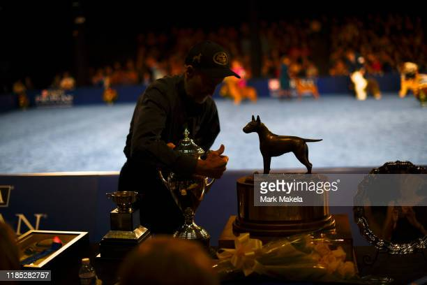 A member of staff arranges a trophy for Best in Show winner before Eduardo Paris a native of Peru won with his Bulldog named Thor at the Greater...