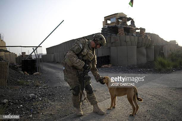 A member of the 1st Platoon Comanche Company of the US Army pets a dog at a checkpoint in the Combat Outpost Lakon in Buwri Tana District Khost...
