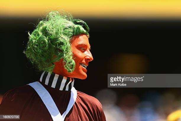 A member of the crowd dressed as an Oompa Loompa watches on during game four of the Commonwealth Bank One Day International Series between Australia...