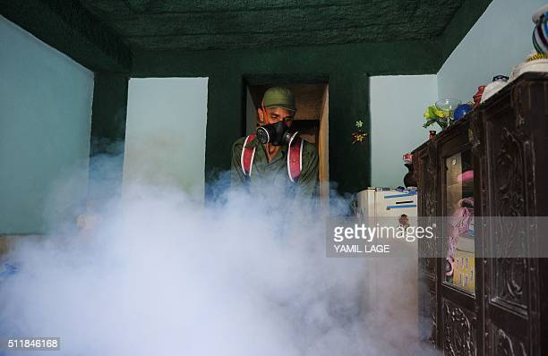 Member of the Cuban army fumigates against the Aedes aegypti mosquito to prevent the spread of zika, chikungunya and dengue, in Havana, on February...