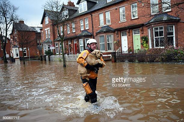 A member of the emergency services rescues a dog from a flooded property in Carlisle northern England on December 7 2015 Prime Minister David Cameron...