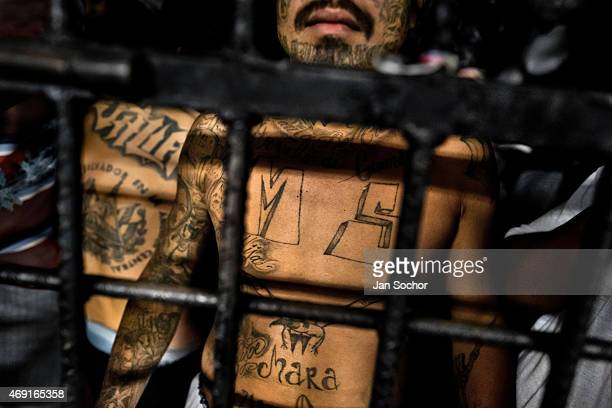 Member of the Mara Salvatrucha gang stands behind bars in a cell at a detention center on February 20, 2014 in San Salvador, El Salvador. Although...