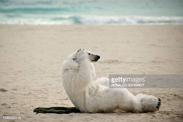 Member of the ONG Sierra Club wearing a polar bear costume demonstrates against the countries who according to them are avoiding the climate change...