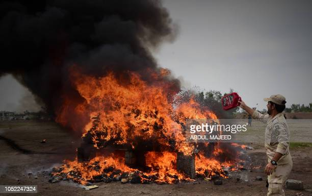 A member of the Pakistani AntiNarcotic Force throws kerosene over a pile of burning drugs and liquor during a ceremony at the Kacha Ghari army firing...