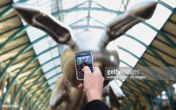 A member of the public takes a picture on a mobile phone of Artist Jeff Koons' giant 53 foot rabbit balloon which is exhibited in Covent Garden...