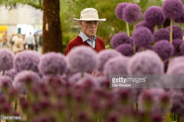 Member of the public walks past the Allium stand in the main pavilion at the Chelsea Flower Show on September 22, 2021 in London, England. This...