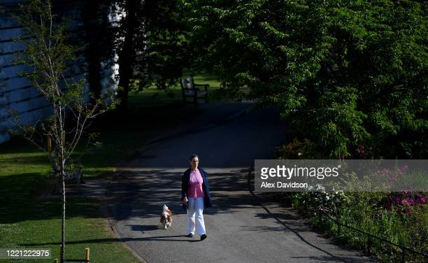 A member of the public walks their dog in St James's Park on April 26 2020 in LondonEngland The British government has extended the lockdown...