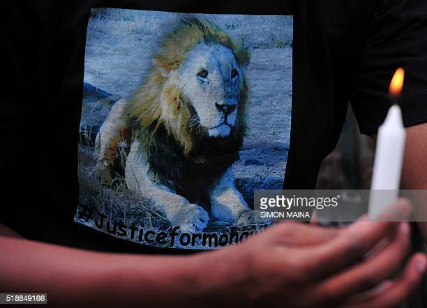 A member of the public wearing a tshirt with a lion picture lights a candle during a vigil at the Nairobi National Park on April 3 2016 as they pay...