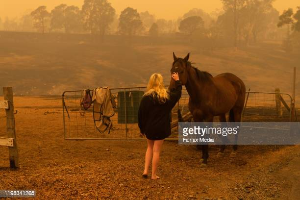 A member of the Rugendyke family comforts her pet horse the day after the family home burned down in a bushfire near Cobargo on the south coast of...