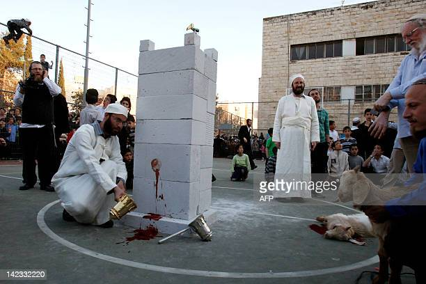 A member of the Temple Institute dressed in biblical priestly garments dashes a vessel filled with the blood of a slaughtered lamb against a mock...